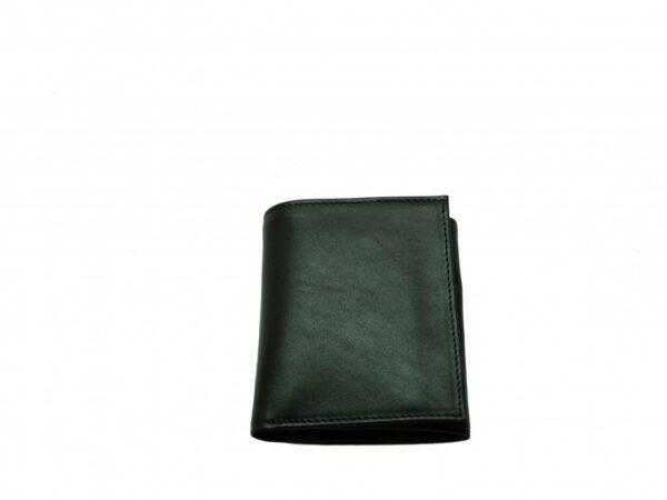 960 denarnica s